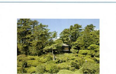 館報 第50号(7-9月号) 発刊